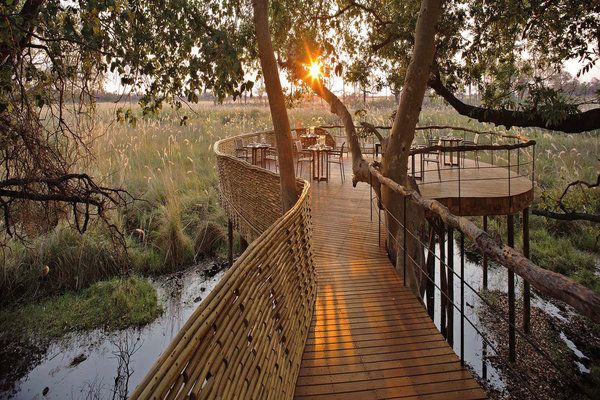 Luxury safari hotel